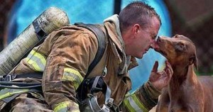 firefighters_rescuing_animals_photos_featured