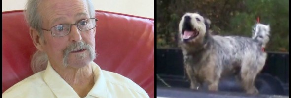 Man-finds-home-for-dog-
